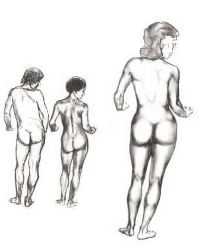 Disegnare Il Corpo Umano