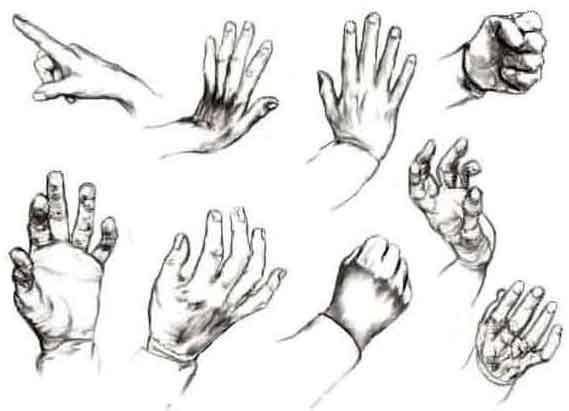 l disegnare le mani