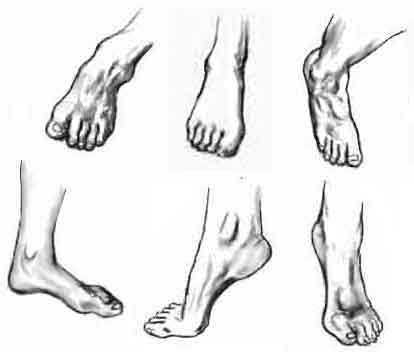 disegno piedi