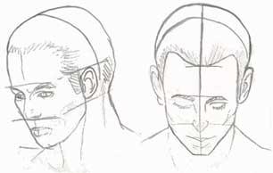 Disegno proporzioni volto