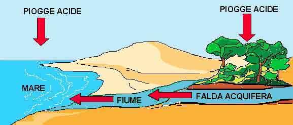 L'inquinamento Del Suolo Inquinamento Del Suolo