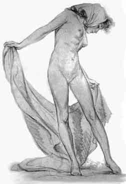 disegno del corpo umano